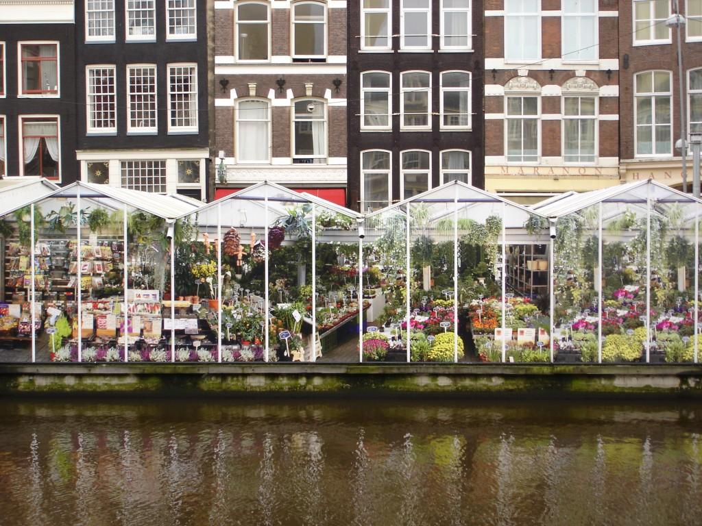 Marché_aux_fleurs_Amsterdam